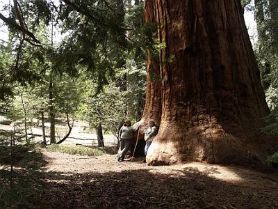 My mom and me and the big tree